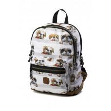 Dogs Pick & Pack Mochila Perros (guardería - E.infantil - paseo)